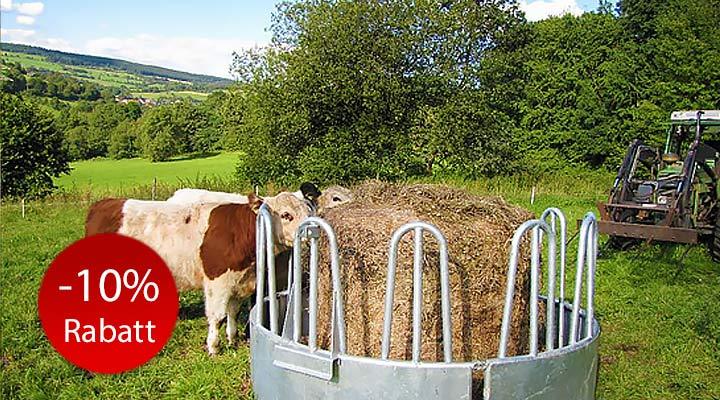 Ringraufe mit Palisaden für Pferde und Rinder