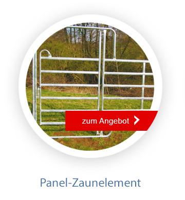 panel2_062021
